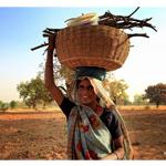 Trải nghiệm Ấn Độ cùng Canon ( Phần 2 )