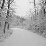 Màu trắng trong ngôn ngữ nhiếp ảnh