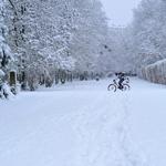 Ngoại ô Paris trắng trời tuyết