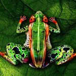 Con người hòa nhập thiên nhiên trong body art đỉnh cao