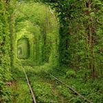 Những cảnh đẹp thiên nhiên khó tin trên thế giới