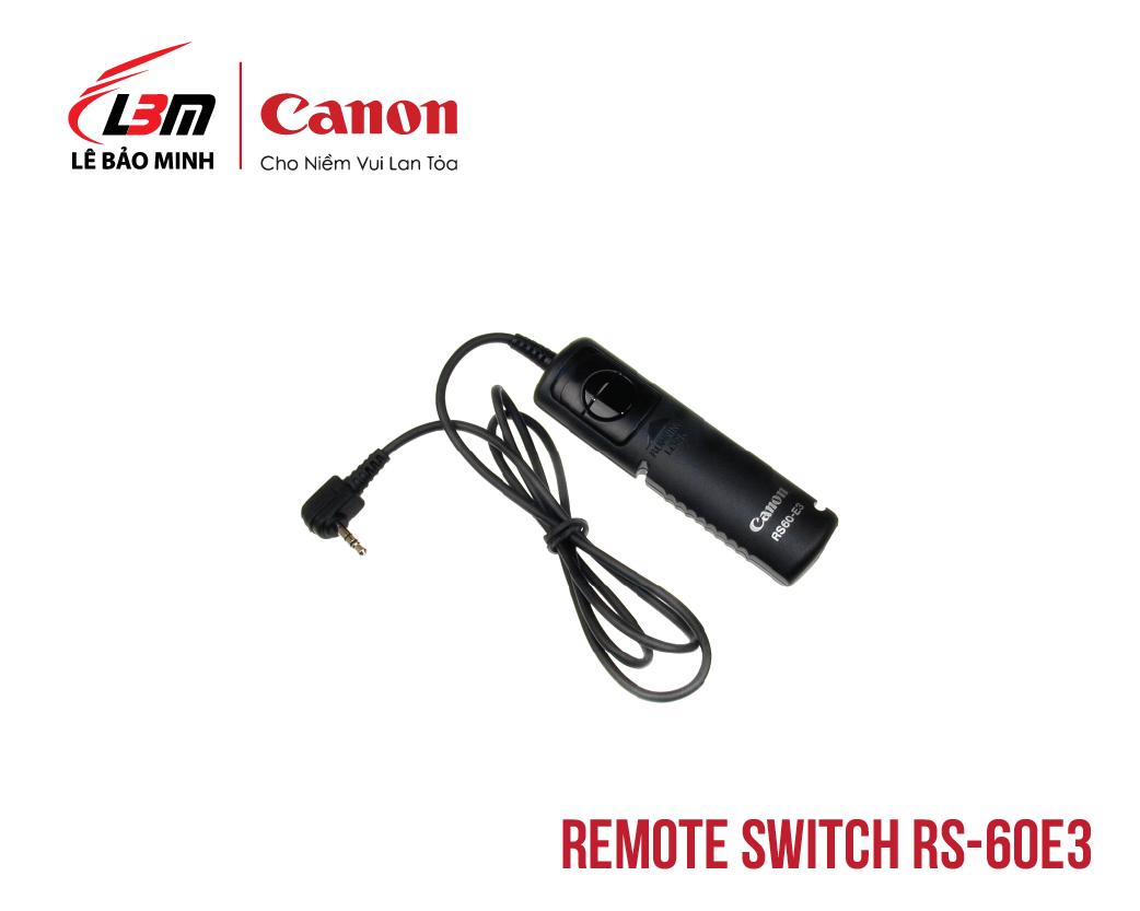 Remote Switch RS-60E3
